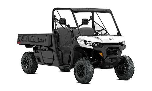 Can-Am Side-By-Side Defender Pro DPS for sale in Ottawa